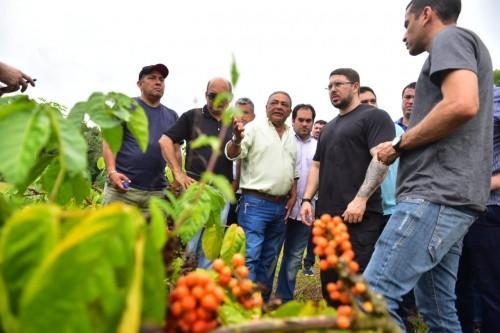 Governo do Amazonas analisa tecnologia desenvolvida pela Embrapa Maués que potencializa produção de guaraná