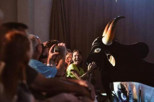 'Absolutamente fantástico', diz turista de cruzeiro sobre show do Caprichoso