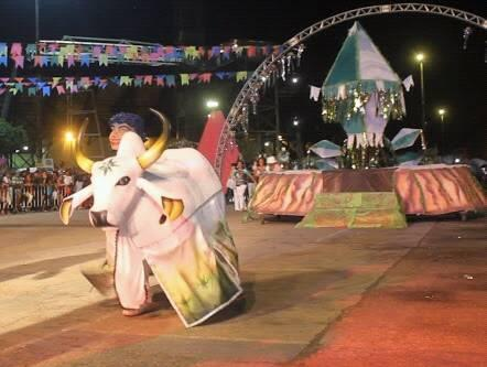 Boi Estrelinha divulga toadas 2020 para o tema Canta Amazônia