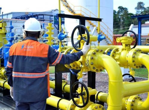 Governo do Amazonas vai promover amplo debate com a sociedade sobre o mercado de energia e gás