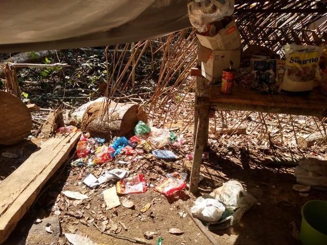 Operação resgata 14 trabalhadores em condições análogas à escravidão em área de desmatamento ilegal no AM