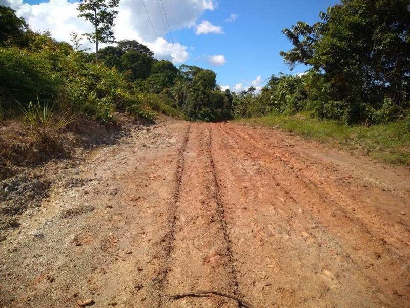 Infraestrutura: Governo do Amazonas constrói estrada em São Paulo de Olivença