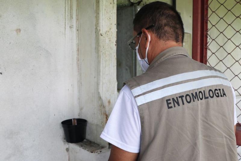 Amazonas integra ação para testar resistência do Aedes aegypti a inseticidas