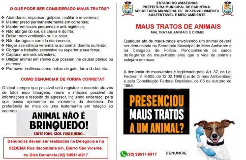 Campanha sensibiliza população para proteção de animais domésticos contra maus tratos