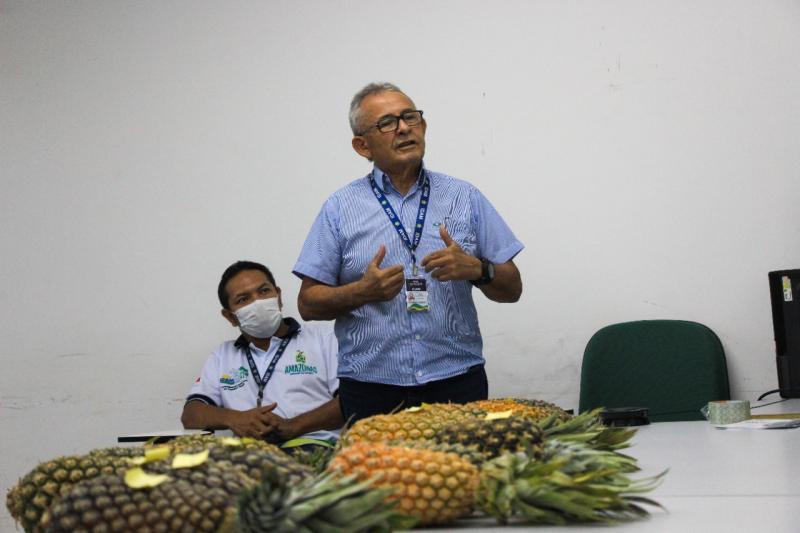 Idam faz curso de Boas Práticas de Produção de Abacaxi para equipe técnica